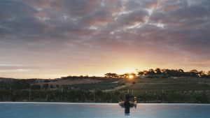 Infinity Edge Lap Pool overlooking the vines