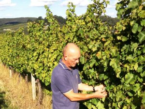 From Burgundy to Barossa with Michael Hall