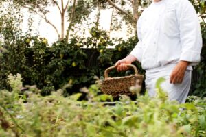 Chef in the kitchen garden