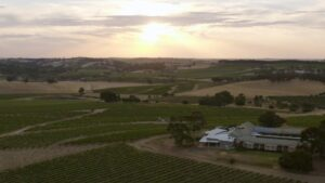 Looking out over the Barossa ranges